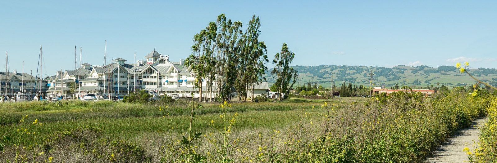 Travel green in Sonoma County at Sheraton Sonoma County - Petaluma hotel.